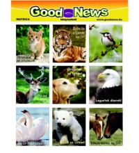 Matrica - GM-09 - Good News